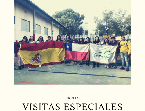 Visitas especiales